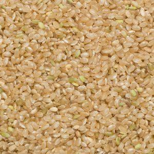 close up of Rice Brown Short Organic