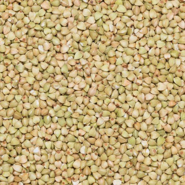Close up of organic fair trade hulled buckwheat.