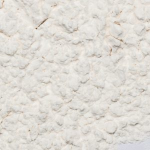 close up of Arrowroot Powder Organic