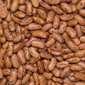 close up of Borlotti-Pinto Beans Organic & Fairtrade