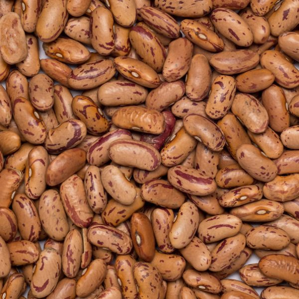 close up of Borlotti-Pinto Beans Organic & Fairtrade